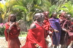 Masai Warriors 2 Stock Footage