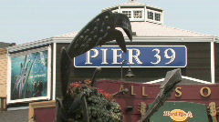 Pier 39 in San Francisco, Washington Stock Footage