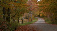 Country Road in the fall Stock Footage