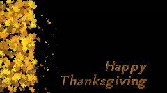 Stinger - Happy Thanksgiving Stock Footage