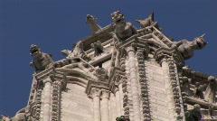Gargoyles on Notre-Dame Stock Footage