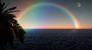 Stock Video Footage of 1033 Blue Moon Ocean with Palm Tree and Rainbow