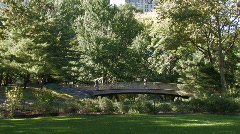 New York City: A foot bridge in Central Park Stock Footage