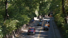 New York City:  Driving through the park Stock Footage