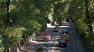 Stock Video of New York City:  Driving through the park Stock Footage