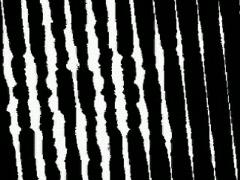 VJ Loop 079 : BW Noise 1 Stock Footage