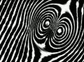 VJ Loop 081 : BW Noise 3 Web Footage