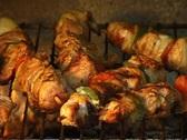 Stock Video Footage of Shashlik food on the grill