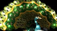 Flashing animated Peacock Lantern Stock Footage