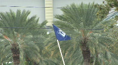 Tampa Bay Rays Flag 01 Stock Footage