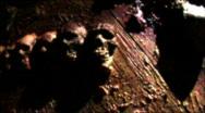 Stock Video Footage of skulls flashing 1 released HD