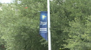 Banner For The Rays Stock Footage