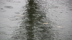 Rain Drops Splash In A Puddle On A Street - stock footage