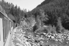 Steam engine river forest DV Stock Footage