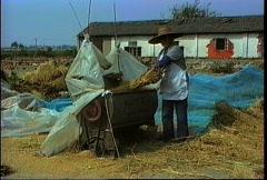 China 1992 Thrashing rice Stock Footage