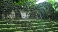 Tikal girl Mossy steps Stock Footage