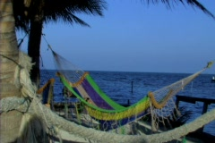 Woman swinging in hammock Stock Footage
