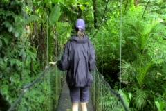 Woman walking across jungle bridge Stock Footage