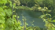 Vineyard. Tourboat on Mosel river. Stock Footage
