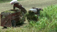 Stock Video Footage of Sugar Cane Harvest - Harvester and Truck working together