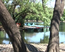 Rawing and pedal boats Stock Footage