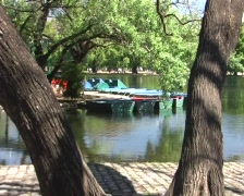 Old pedal boats Stock Footage