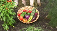 Zoom to a basket of fresh vegetables Stock Footage