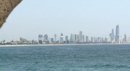 Stock Video Footage of Gold Coast View from Burleigh Heads, Pandanus