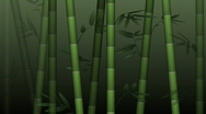 Stock Video Footage of Bamboo forest background - HD, loop