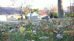 Racking leaves from front yard Stock Footage