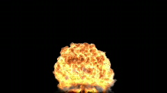 Nuclear explosion high resolution render,frame freezing Stock Footage