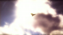 Flying High - stock footage