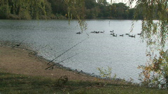 Fishing Poles and Geese Stock Footage
