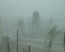 Extreme Winds As Hurricane Hits Stock Footage