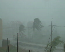 Extreme Winds As Hurricane Hits - stock footage