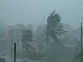 Stock Video Footage of Extreme Winds As Hurricane Hits