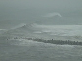 Sea Storm Waves From Impending Hurricane Stock Footage