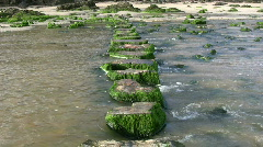 Stepping stones. Stock Footage