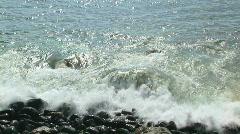 Rocky Hawaiian Beach Stock Footage