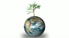 EARTH AND TREE Stock Footage
