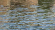 Stock Video Footage of Lake water ripples