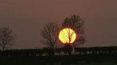 Sun sets behind trees through heat haze. Stock Footage