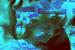 Blue angel - stock footage