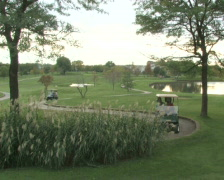 Golf Carts On Course Stock Footage