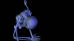Skeleton Dance Bow Stock Footage