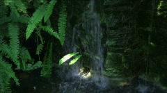 Mini Waterfall - stock footage
