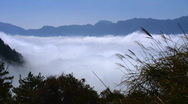 Stock Video Footage of Asian mountain fog timelapse