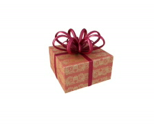 Xmas Gift 001 PAL element 001 Stock Footage