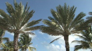 South Beach in Miami, Florida Stock Footage