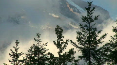Clouds Pass Mount Rainier and Pine Trees, time lapse  Stock Footage